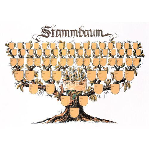 Kinderland Verlag Stammbaum Schmuckbild