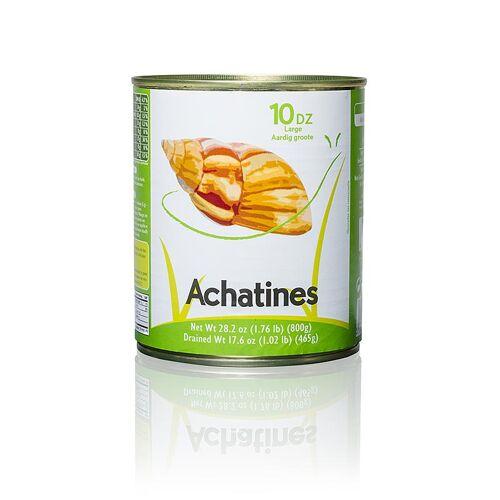 Achat Schnecken, mittelgroß, 800 g, 120 St