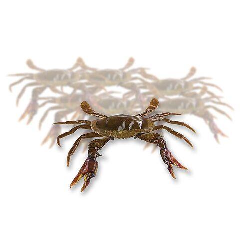 Soft Shell Mangroven Krabben, Prime, Paitoon, TK, 1 kg, 12 St