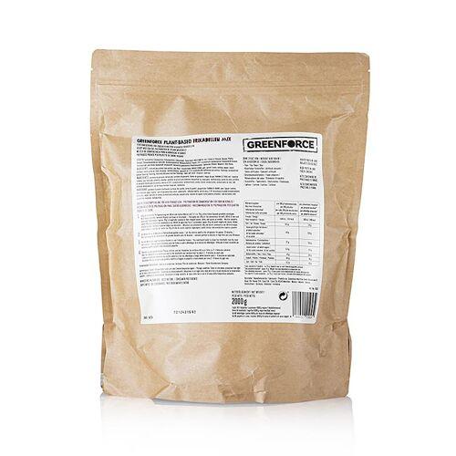 Greenforce Fertigmix für vegane Frikadellen, aus Erbsenprotein, 2 kg