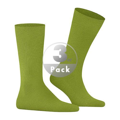 Falke Socken Family 3er Pack 14645/7187 39-42