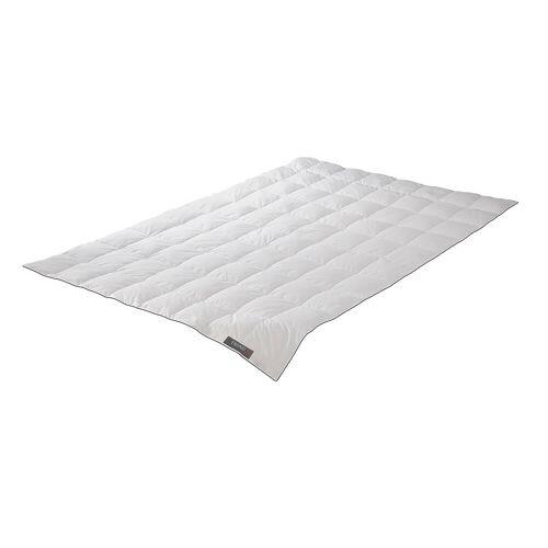 Badenia Daunendecke Trendline Comfort leicht 135 x 200 cm