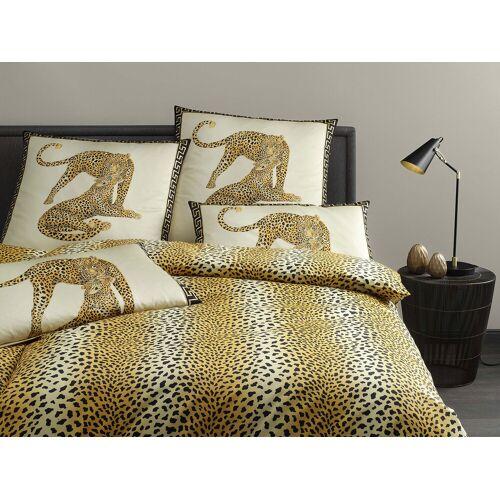 Elegante Gepard Pair 2352