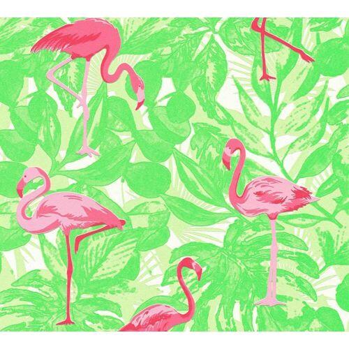 AS Creation Vliestapete Flamingo, Grün-Pink, Tapete Boys & Girls 6