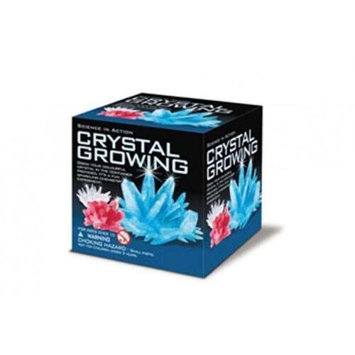 4M Wissenschaft in Aktion: Kristallzucht