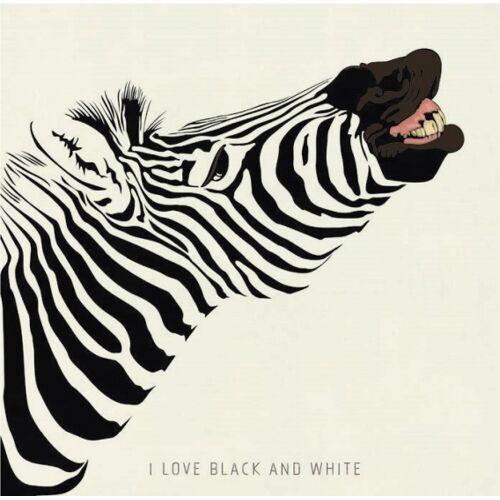 Chic.Mic leinwandbild 20 x 20 x 4 cm Zebra