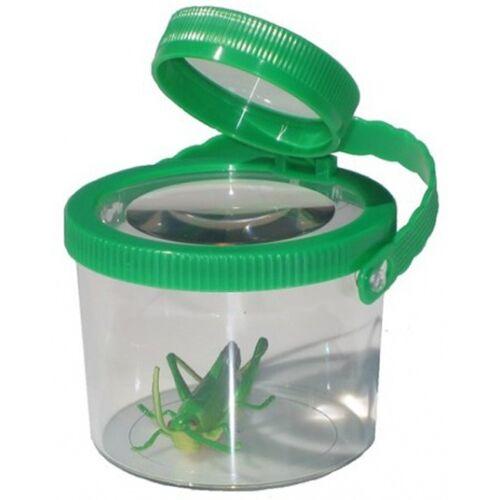 Mamamemo Insekten Kunststoff Lupe 8 cm grün