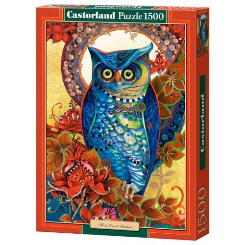 Castorland Puzzle Hoot, David Galchutt 1500 Stück