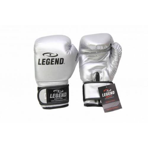 Legend Sports boxhandschuhe Powerfit & Protect silber