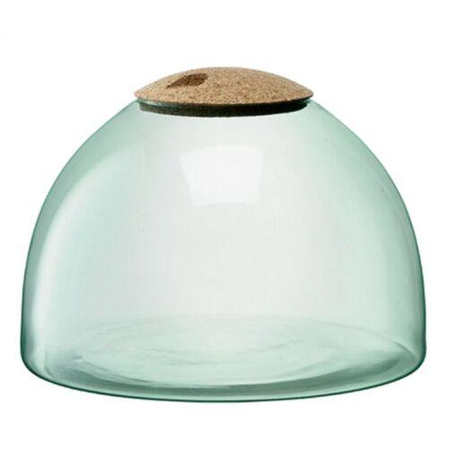 L.S.A. terrarium Canopy geschlossener Garten 31 cm Glas/Kork grün