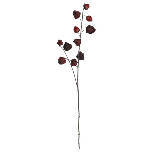 Mica Decorations dekorationszweig Laterne Pflanze 94 cm rot