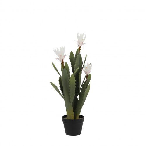Mica Decorations künstliche Pflanze Kaktus 79 x 18 cm grün/weiß