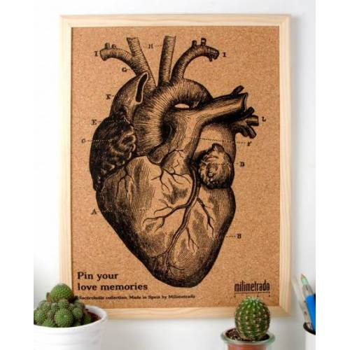 Milimetrado anschlagbrett Anatomie 40 x 30 cm Kork/Holz braun