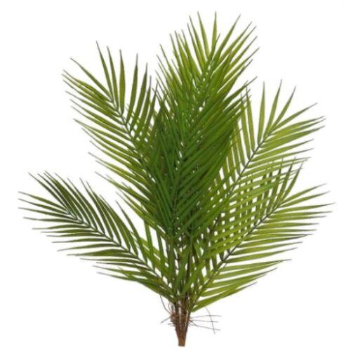 Gifts Amsterdam kunstpflanze Areca Palm60 cm Seidengrün