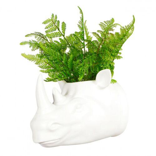 Walplus pflanzernashorn 24,2 cm Polyresin weiß