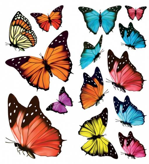 Crearreda fensteraufkleber Schmetterling 30 x 31 cm Vinyl 14 Stück