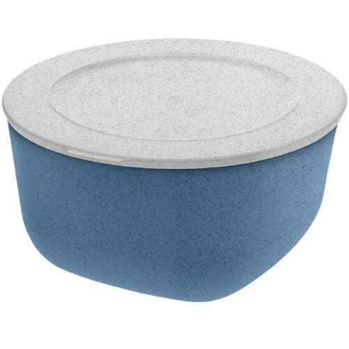 Koziol lunchbox Connect 2 Liter 20,5 cm blau