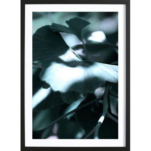 """JUNIQE Bild Blätter & Pflanzen """"Ginkgo 01"""" von JUNIQE - Künstler: Froilein Juno"""
