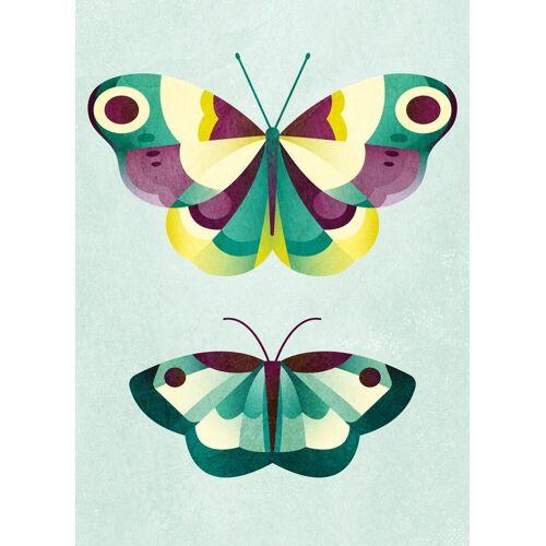 """JUNIQE Leinwandbild Schmetterlinge """"Schmetterlinge"""" von JUNIQE - Künstler: Lily Albertine"""