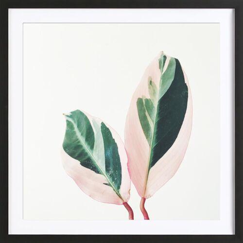 """JUNIQE Bild Blätter & Pflanzen """"Pink Leaves"""" von JUNIQE - Künstler: Cassia Beck"""