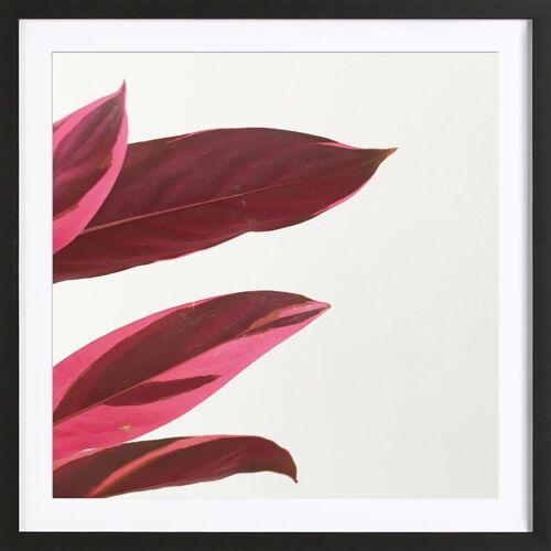 """JUNIQE Bild Blätter & Pflanzen """"Red Leaves I"""" von JUNIQE - Künstler: Cassia Beck"""