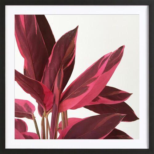 """JUNIQE Bild Blätter & Pflanzen """"Red Leaves II"""" von JUNIQE - Künstler: Cassia Beck"""