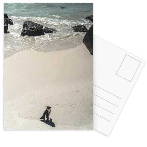 "JUNIQE Postkarten Pinguine ""Solo Penguin"" von JUNIQE - Karten Kunst"