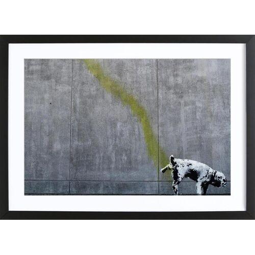 """JUNIQE Bild Hunde """"Pissing Dog"""" von JUNIQE - Künstler: andem"""