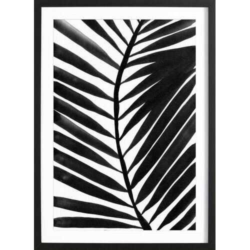 """JUNIQE Bild Palmen """"Palm II"""" von JUNIQE - Künstler: Kristen Polsinelli"""