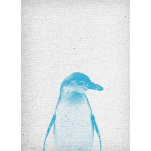 """JUNIQE Leinwandbild Pinguine """"Pinguin 01"""" von JUNIQE - Künstler: Froilein Juno"""