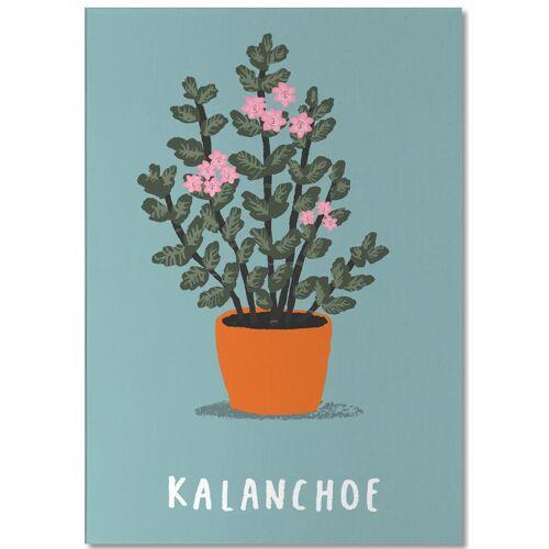 """JUNIQE Notizblock Blätter & Pflanzen """"Kalanchoe"""" von JUNIQE"""
