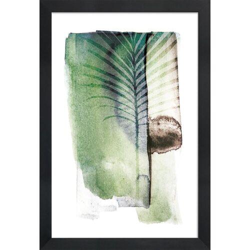 """JUNIQE Bild Blätter & Pflanzen """"Jurassic Cycad"""" von JUNIQE - Künstler: Shot by Clint"""