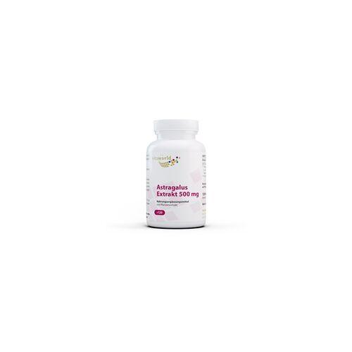Vita-World GmbH Astragalus Extrakt 500 mg (120 Kps)