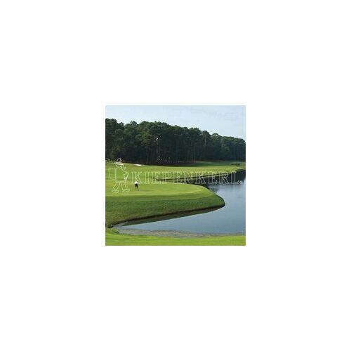 Rasen Kiepenkerl Kiepenkerl Golfrasen Masters Nachsaat 10 kg