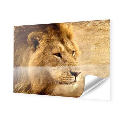 Foto auf Klebefolie im Format 35 x 28 cm