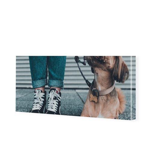 Leinwand Bild als Panorama im Format 100 x 50 cm