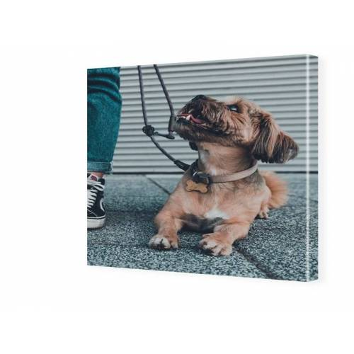 Fotos auf Leinwand quadratisch im Format 30 x 30 cm