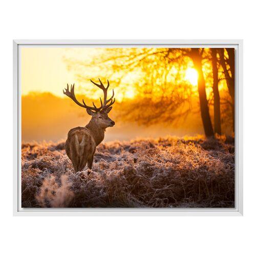Foto auf Leinwand im Schattenfugen Rahmen für Fotos auf Leinwand in weiß im Format 60 x 45 cm