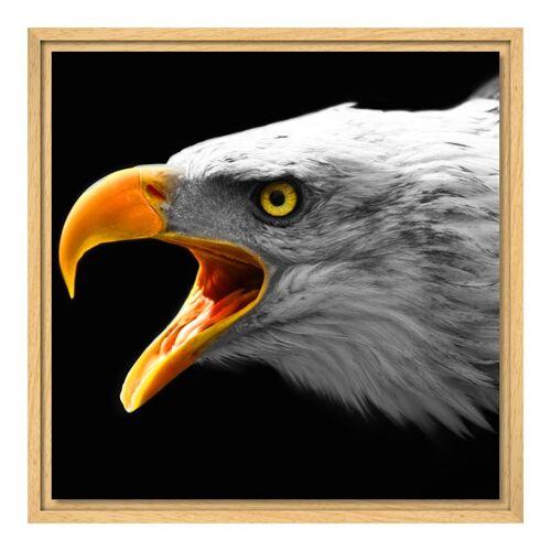 Bilder auf Leinwand im Schattenfugen Rahmen Natur für Fotos auf Leinwand im Format 120 x 80 cm