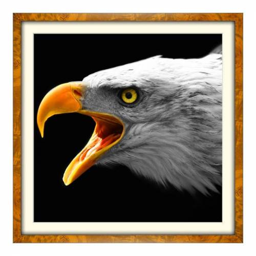 Foto auf Künstlerpapier im Wurzelholz Holzrahmen im Format 64 x 36 cm