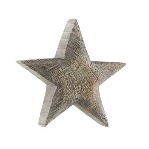 WMG Holz Stern Pappel grau 25 cm