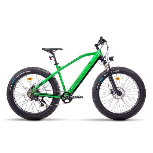 MS Ebike E Bike Trekking fatbike Falcon Gruen