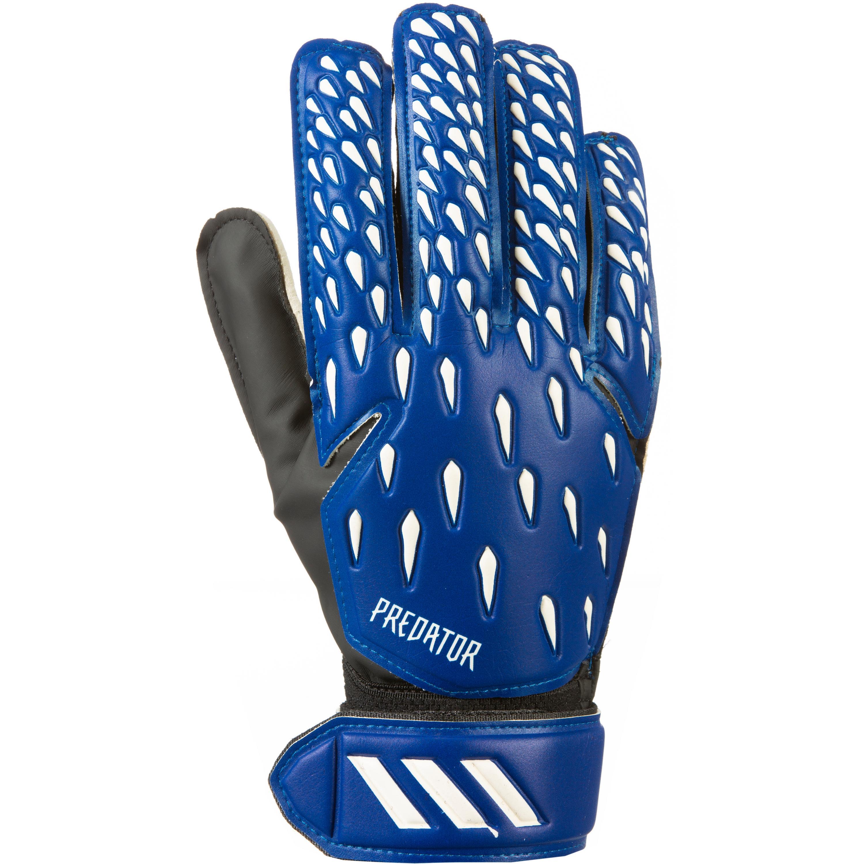 Adidas Predator Training Torwarthandschuhe team royal blue-white-black 9