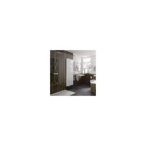 HSK Walk In Pro Glaselement 1-teilig 120 cm    17331202-68-50