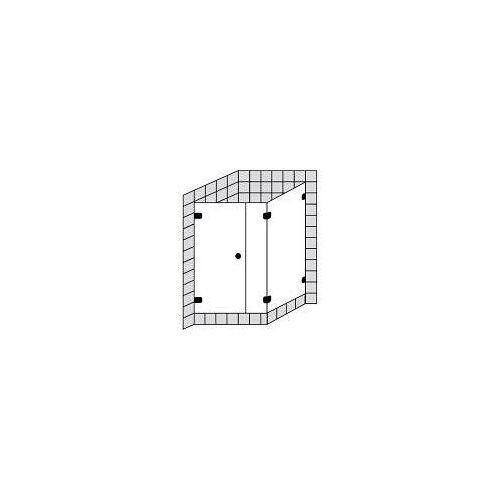 Sprinz BS-Dusche 75 Tür mit Seitenwand bis 100 x 100 x 200 cm BS-Dusche 75 B: 100 T: 100 H: 200 cm chrom BS7517.0-CH