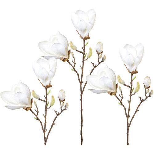 Kunstblume, Höhe 69 cm, 3er Set, weiß