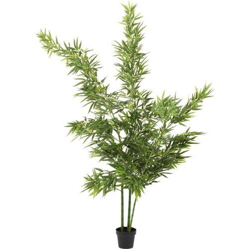KARE Dekoobjekt »Deko Pflanze Bamboo Tree 200cm«