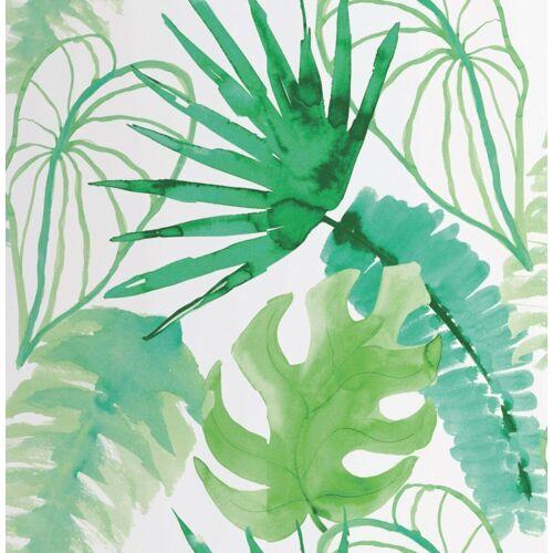 Vliestapete »Jungle - Botanik«, botanisch, (1 St), Monstera - 10m x 52cm