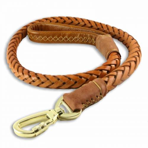 Monkimau Hundeleine »Hundeleine aus geflochtenem Leder für große Hunde«, Leder