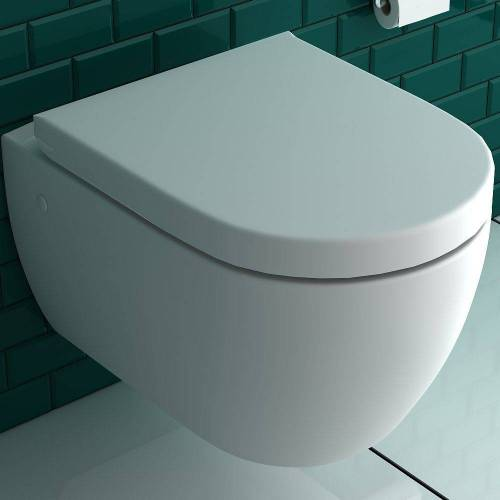 Alpenberger Tiefspül-WC »Dusch WC + WC-Sitz D-Form, 2 in 1 BIDET & WC«